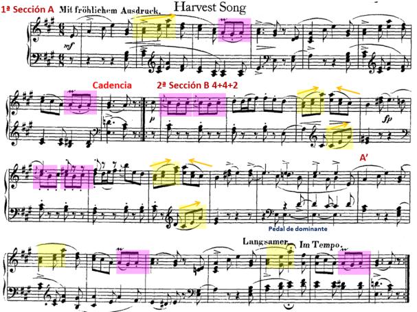 Schumann 24 motivos de B