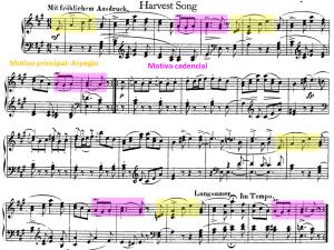 Schumann 24 motivos principales